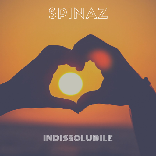 Cover di Indissolubile by Spinaz